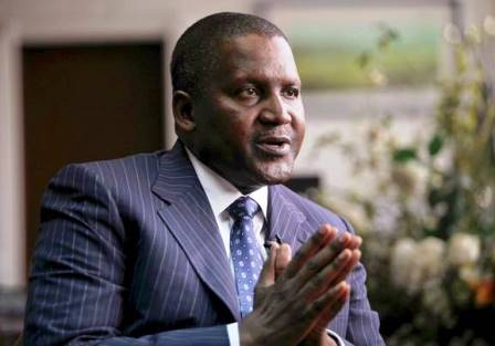 Dangote to invest $450m to develop agric in Niger State in 3 years