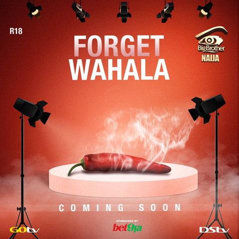 Big Brother Naija season 4 kicks off June — Multichoice